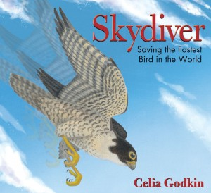 Skydiver: Saving the Fastest Bird in the World  by Celia Godkin
