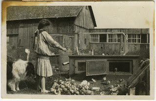 Aileen feeding the chickens