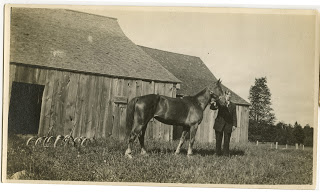 Lawrence and one of the horses, before the war
