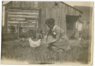 May feeding the chickens at the farm