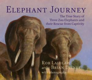 ElephantJourney_LR_RGB