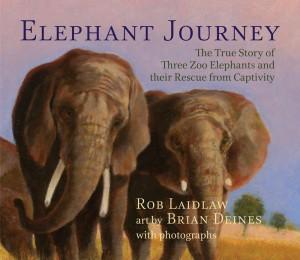 ElephantJourney_Internet